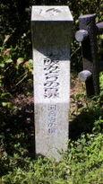 57 河合寺の桜