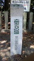 82 泉穴師神社の森