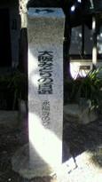 95 永福寺のびゃくしん